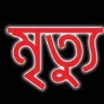 বি-পাড়ায় বিদ্যুৎপৃষ্ট হয়েভ্যানগাড়ি চালকের মৃত্যু