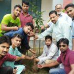 মুরাদনগরে ছাত্রলীগ সভাপতির উদ্যোগে নূরুন্নাহার বালিকা উচ্চ বিদ্যালয়ে বৃক্ষরোপন