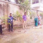মনোহরগঞ্জে উপজেলা পোঁমগাও প্রাইমারি স্কুলে ফলজ বৃক্ষের চারা রোপন
