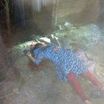 চাঁদপুরে বাড়ি থেকে মোবাইল ফোনে ডেকে নিয়ে সাবেক স্ত্রীকে গলা কেটে হত্যা