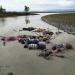 নাফ নদী থেকে এ পর্যন্ত ৪৬ রোহিঙ্গার মৃতদেহ উদ্ধার