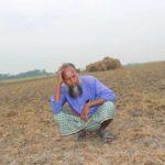 শত্রুতা করে কলাই ক্ষেতে বিষ প্রয়োগ মতলব উত্তর থানায় অভিযোগ দায়ের