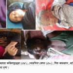 শাহরাস্তিতে ডেমু-সিএনজি সংঘর্ষে নারী শিশুসহ আহত ৫