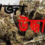মনোহরগঞ্জে মাদক সম্রাট বাবলুর চা দোকান থেকে গাঁজা উদ্ধার