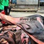 কুমিল্লায় লাখ টাকার গরুর চামড়া ৬শ টাকা, চামড়া ব্যবসায় সিন্ডিকেটে হতাশ কোরবানিদাতারা