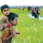 কুমিল্লা সীমান্ত দিয়ে ভারত থেকে বাংলাদেশে ঢুকছে আতঙ্কিত রোহিঙ্গারা