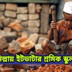 কুমিল্লায় ইটভাটার শ্রমিক স্কুলছাত্র