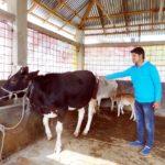 ব্রাহ্মণবাড়িয়ায় তরুণ কৃষক গোলাম জিলানী কৃষি খামার করে সমৃদ্ধি অর্জন করেছেন