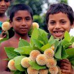 আষাঢ়ের প্রথম দিনেই কুমিল্লায় প্রশান্তির বৃষ্টি