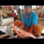 বিচিত্র পেশা মাছ কাটা