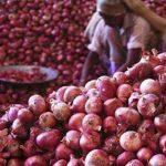 পেঁয়াজ সিন্ডিকেট: দেড় মাসে ২ হাজার কোটি টাকা হাতিয়ে নিল