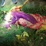 বরুড়ায় টমেটো ক্ষেতে যুবতীর মরদেহ