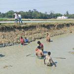 কুমিল্লায় খাডিতে মাছ ধরার প্রচলণ ধরে রেখেছে গ্রামের লোকজন
