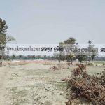 চৌদ্দগ্রামে কৃষি জমি ভরাট করে অবৈধভাবে তৈরি হচ্ছে ইটভাটা