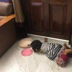 ডাক্তার মা আইসোলেশনে, দরজার বাইরে শুয়ে শিশুটি তার মাকে ডাকছে