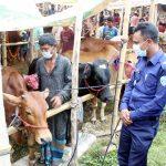 মুরাদনগরে কোরবানির পশুর হাটে স্বাস্থ্যবিধি মানতে প্রতিটি বাজারে থাকছে পুলিশ সদস্য