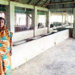 কুমিল্লা জগন্নাথপুরে ডেইরি ফার্মে ডাকাতি ২০ লক্ষ টাকার ১৬ টি গরু লুট