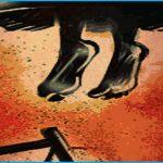 চাঁদপুরে তরুণীর রহস্যজনক মৃত্যু, ঝুলন্ত মরদেহ উদ্ধার