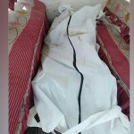 চাঁদপুরে লঞ্চের স্টাফ কেবিন থেকে তরুণীর লাশ উদ্ধার