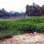 দখল-দূষণ-ভরাটে মৃতপ্রায় কুমিল্লার গোমতী নদী