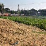 কুমিল্লা নগরীর কালিয়াজুড়িতে পুকুর ভরাট চলছে