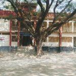 নিস্তব্ধ চাঁদপুরের শিক্ষা প্রতিষ্ঠানগুলো: ঝড়ে যাচ্ছে অসংখ্য শিক্ষার্থী