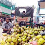 মুরাদনগরে তীব্র গরমে কদর বেড়েছে তালশাঁসের: কালের বিবর্তনে হারিয়ে যাচ্ছে গাছ