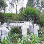 করোনায় কুমিল্লায় আরও ৬ জনের মৃত্যু , নতুন শনাক্ত ২৬৩