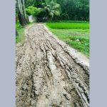 বুড়িচংয়ের কোরপাই-কাকিয়ারচর সড়কের বেহাল দশা, দুর্ভোগে হাজারও গ্রামবাসী