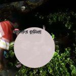 মুরাদনগরে নিখোঁজের ২ দিন পর ডোবা থেকে বৃদ্ধের অর্ধগলিত মরদেহ উদ্ধার