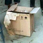 বিস্কুটের কার্টনে মিললো নবাজতক, কান্নার আওয়াজ যেন শুনতে না পায় মুখে লাগানো ছিল কসটেপ